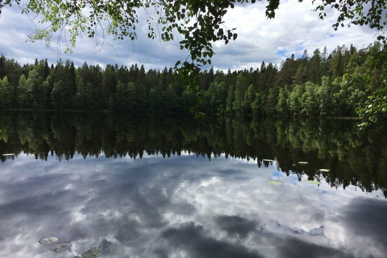 Ruutanan järvi ja metsää.